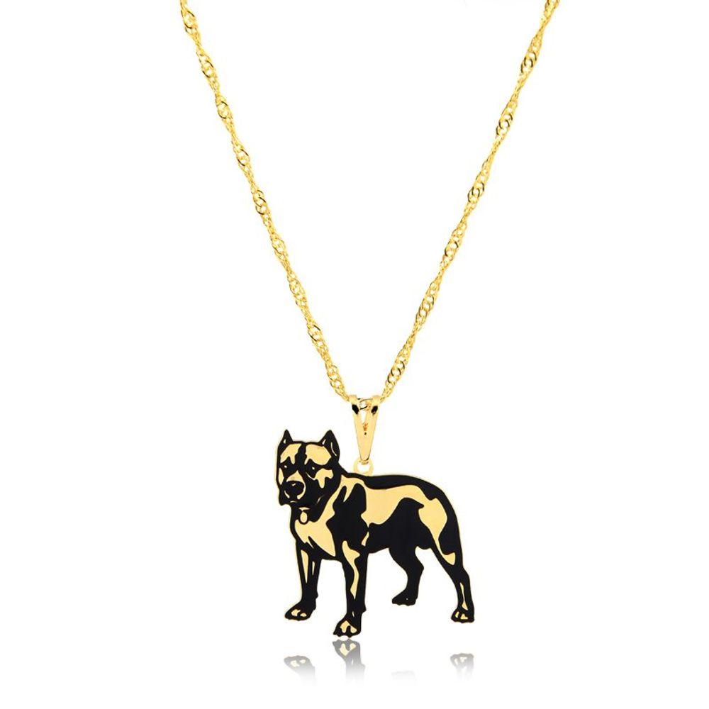 colar-pet-pitbull-banhado-em-ouro-18k-1605560653.4399